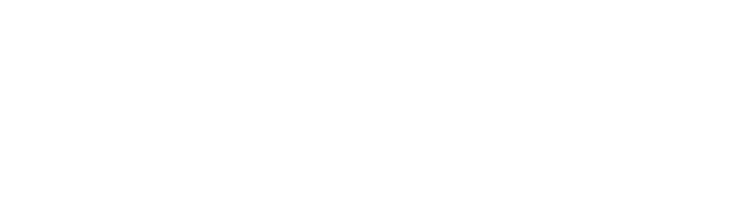 Logo Ballfreunde in weiß